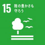 SDGs 15緑